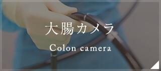 大腸カメラへのリンクボタン